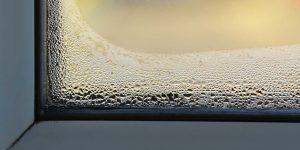 Damp-or-condensation-300x150.jpg
