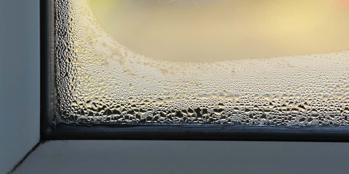Damp-or-condensation.jpg