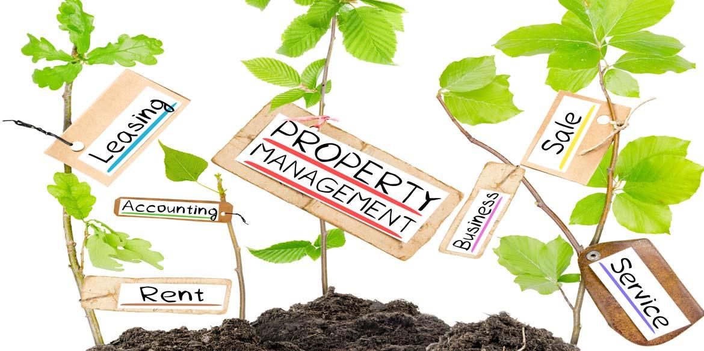 Property-management-Kempton-Carr-Croft.jpg