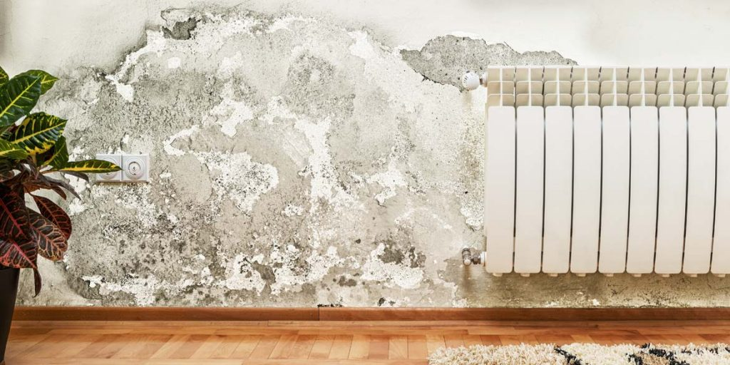 4-kinds-of-damp-that-can-affect-your-homee-1024x512.jpg